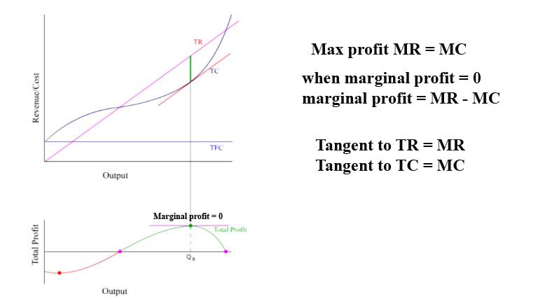 Living Economics  Profit Maximization Of Price Takers